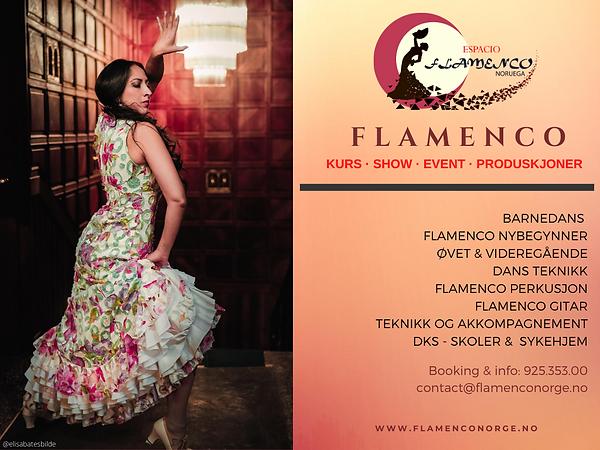 Copia de www.flamenconorge.no.png