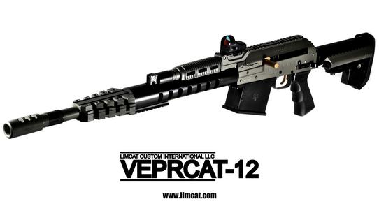 veprcat12_2.png
