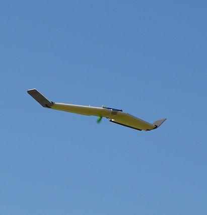 Wing Take 2.jpg