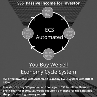 SSS Active Investment 150% return