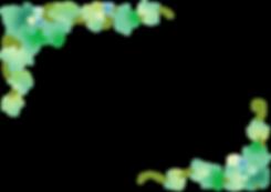 蔦と実のフレーム.png