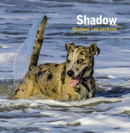 Shadow Photo Book - Available Now