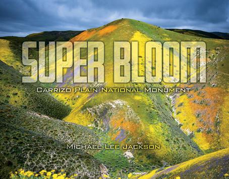 Super Bloom released