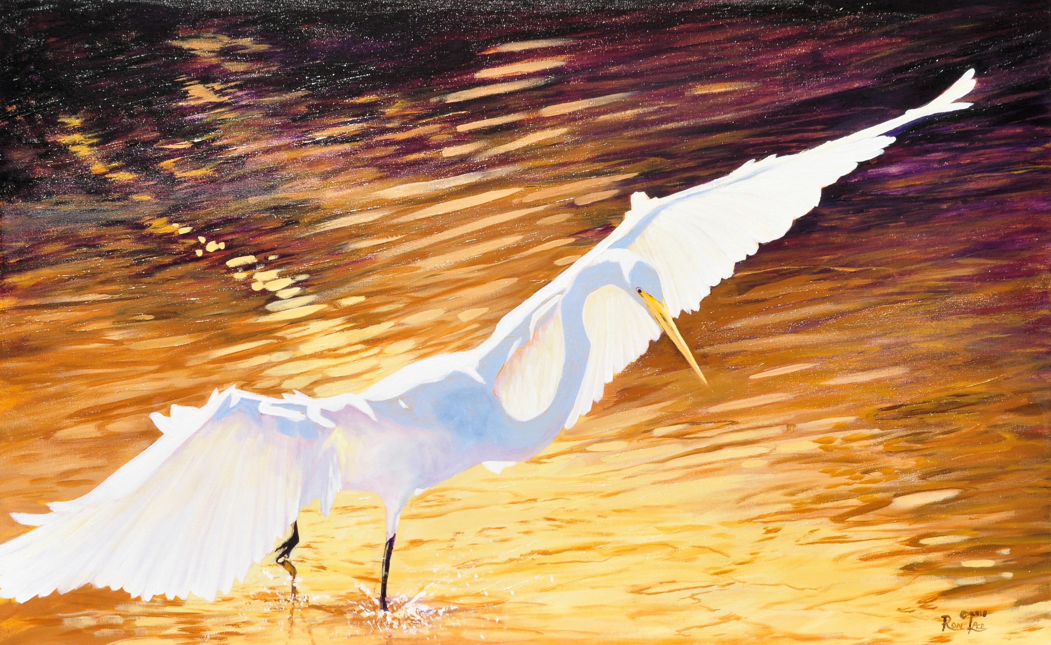 Sun Dance-Egret