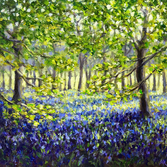 Bluebells at Turville