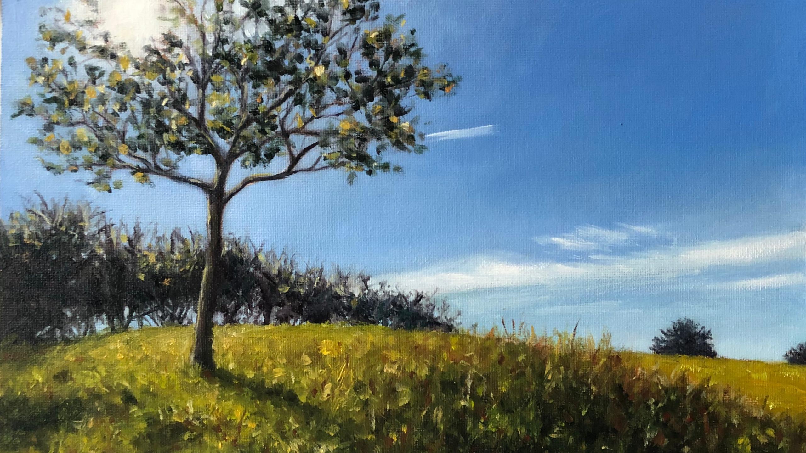 Sunlit Tree (Watlington Hill)