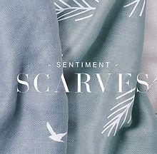 sentiment-scarves.jpg