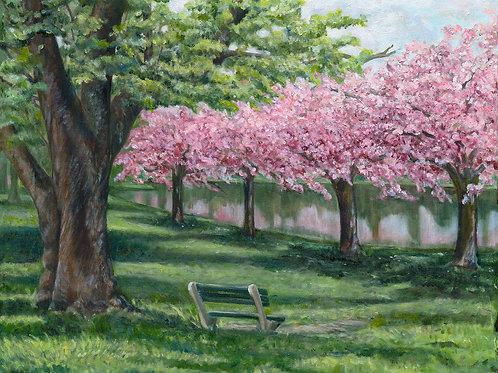 Passaic Blooms