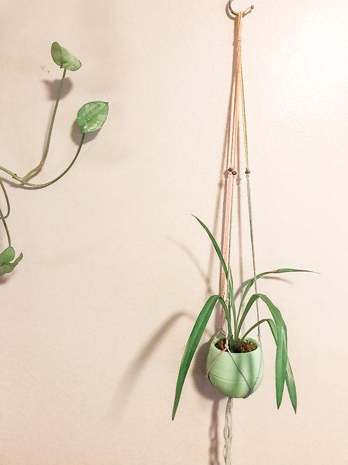 """""""The Mini Mini"""" Macrame Plant Hanger"""