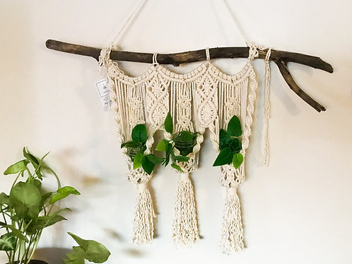 """The Trio"" Macrame Wall Hanger for Plants"