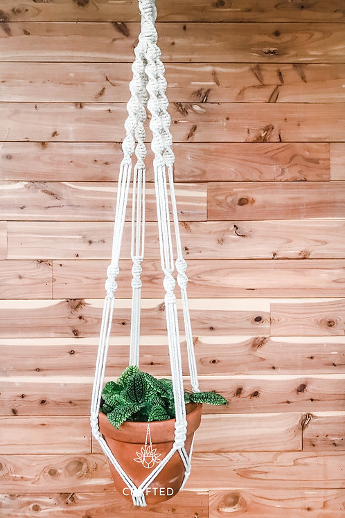 """Twisted"" Macrame Plant Hanger"