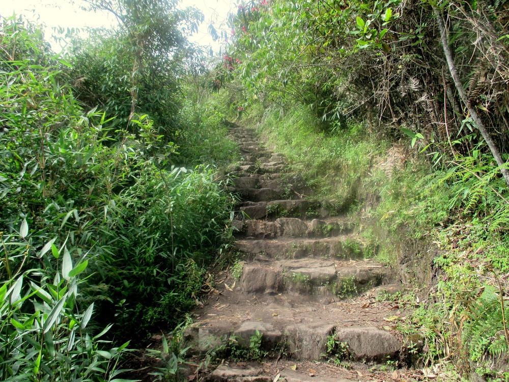 Hike to Machu Picchu Mountain