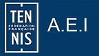 Logo_AEI.png