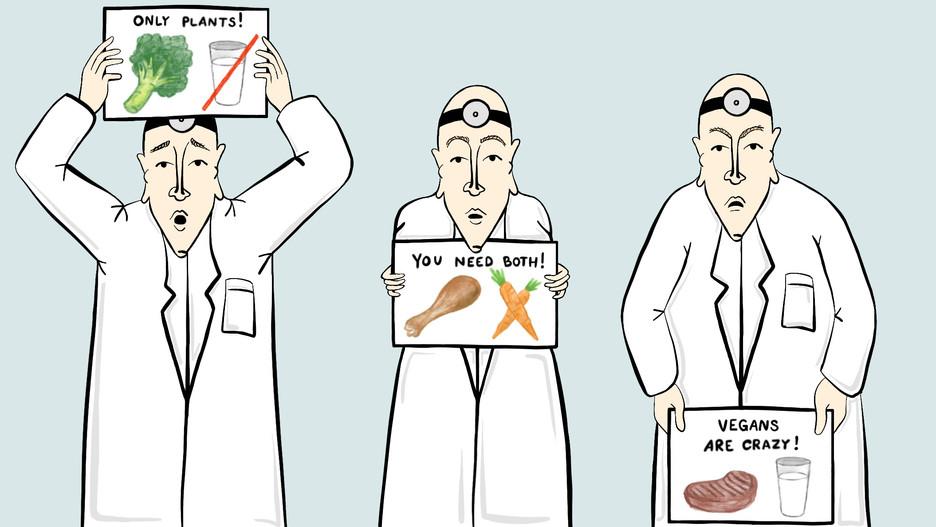 Authority_Doctors.jpg