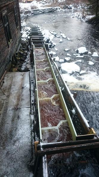 Fisktrappa i komposit