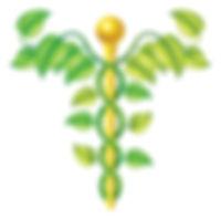 North London Doula Homeopath
