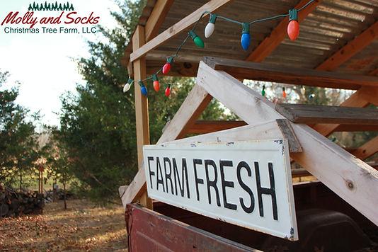 farm fresh with logo.jpg