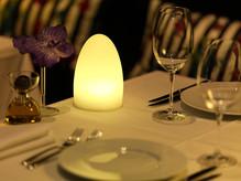 Gherkin Cordless Lamp