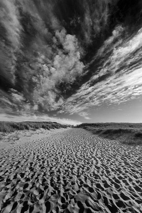 Deserted Beach, Cape Cod, MA