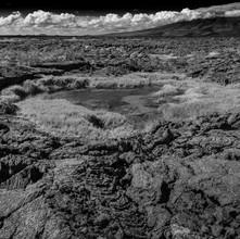 Galapagos Island Lava Field