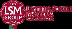 lsm-logotype.png
