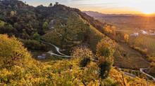 Italia, tierra de historia y de vinos