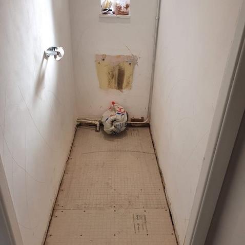 Before - Grey Toilet
