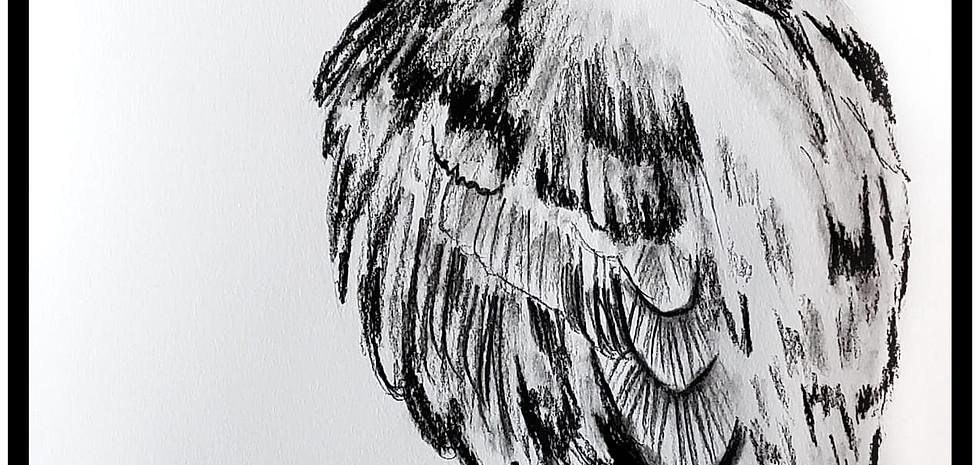 Bird in Charcoal