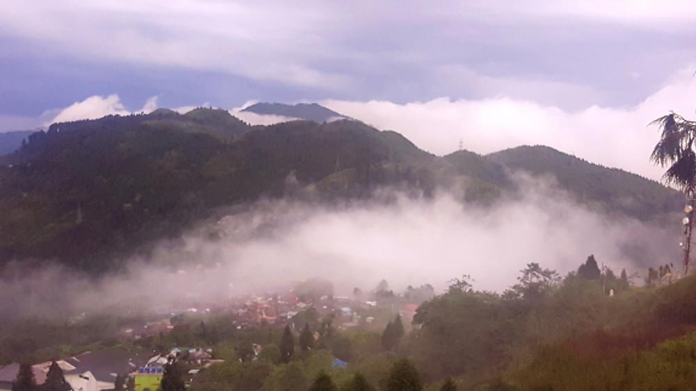 Queen of Hills - Darjeeling