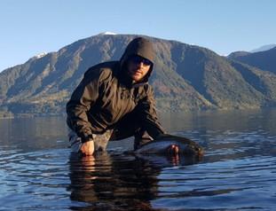 Pesca en Lago Rupanco
