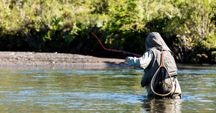 Pesca Rio Gaviotas
