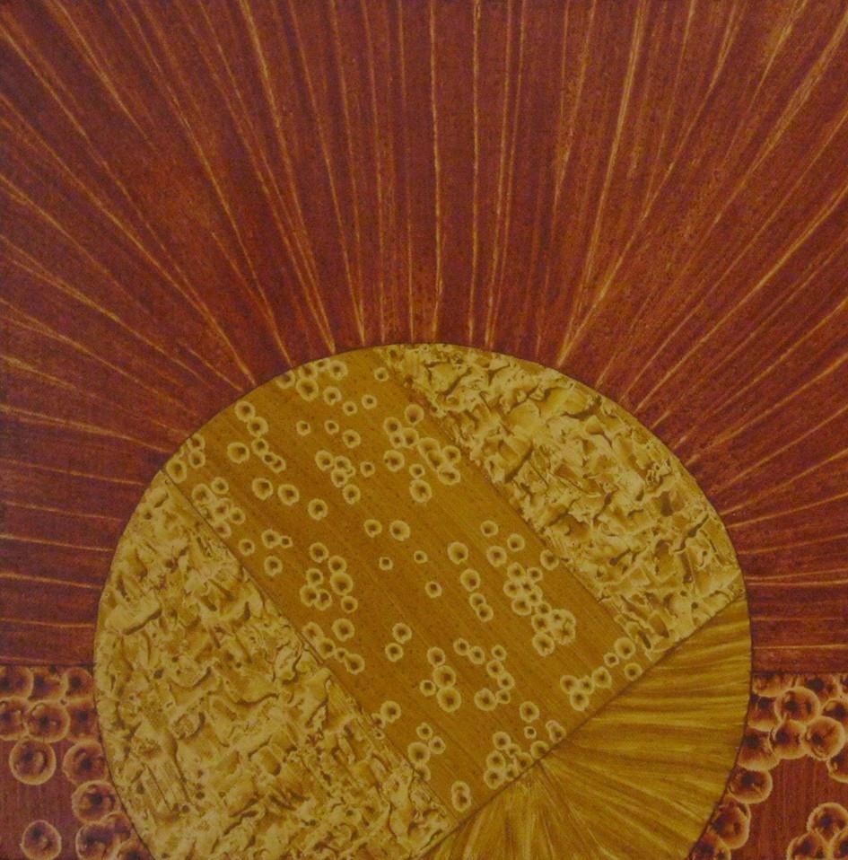 Seeds of Sun