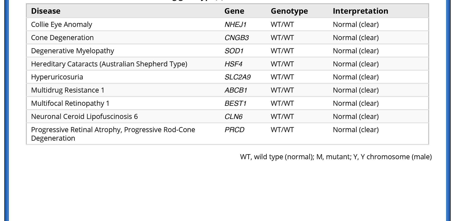 GeneticTestMollie.jpg