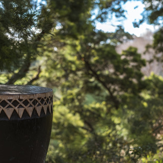 View from the outdoor bath - Toetoe Retreat