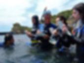 Corso seawatching.jpg