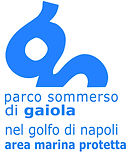 Logo AMP Gaiola_HR-blu.jpg