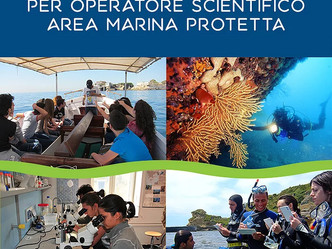 Corso di formazione/selezione operatore scientifico Area Marina Protetta