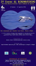 Locandina BIRD_2011.jpg