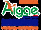 Logo AIGAE - APPROVATO DA - per fondo ch
