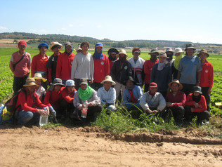 Group Photo of Worker newly arrived at their worksite in Spain