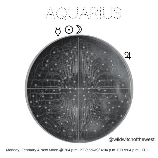 Freedom & Forward-thinking :: Aquarius New Moon/Chinese Lunar New Year