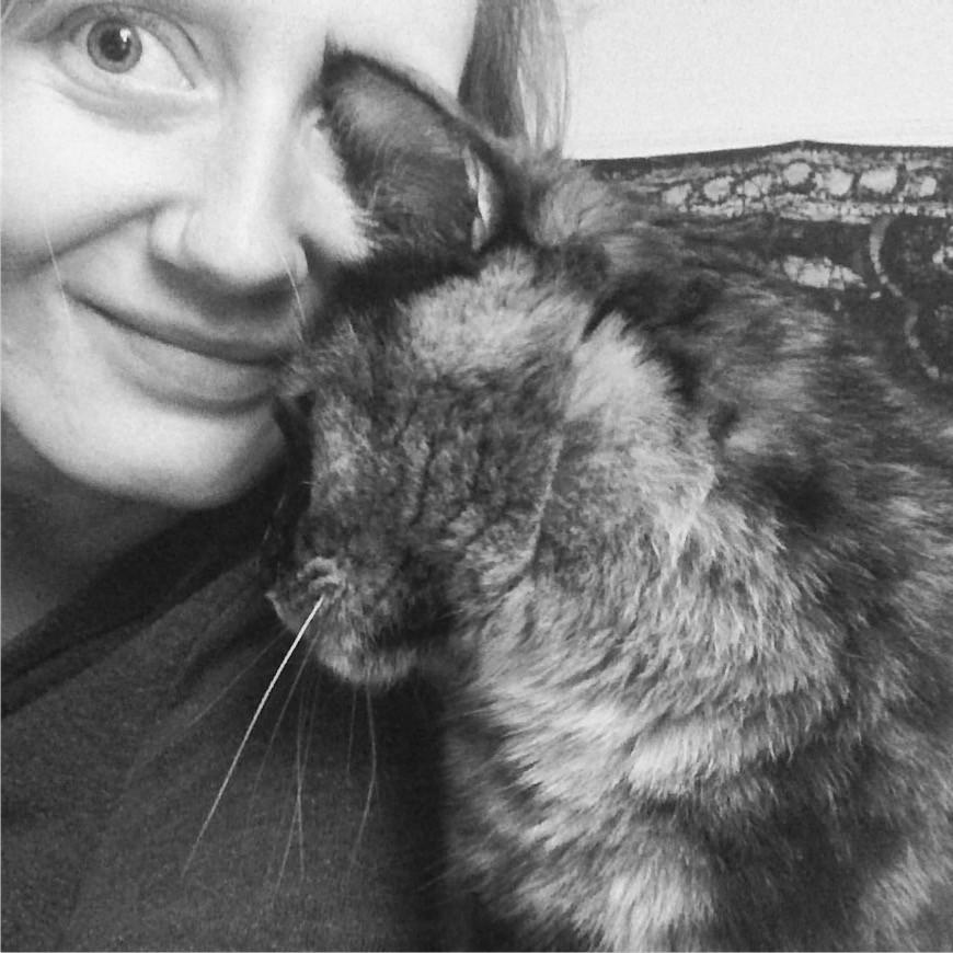 Cat+love+cuddle