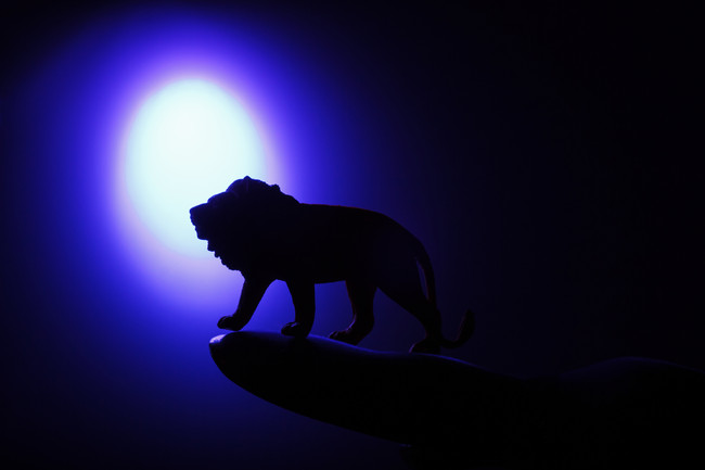 Courage & Confidence :: Leo Full Moon/Lunar Eclipse