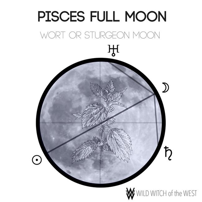 Dazed & Dreamy :: Pisces Full Moon
