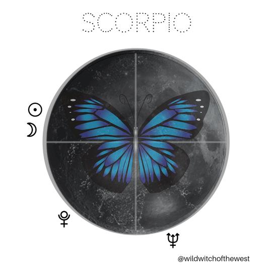 Magical Metamorphosis :: Scorpio New Moon