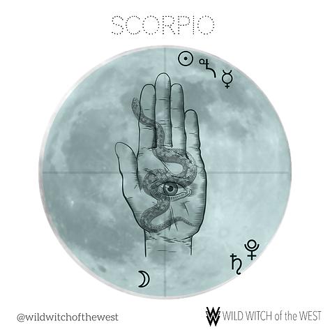 Shedding & Shadow :: Scorpio Full Moon