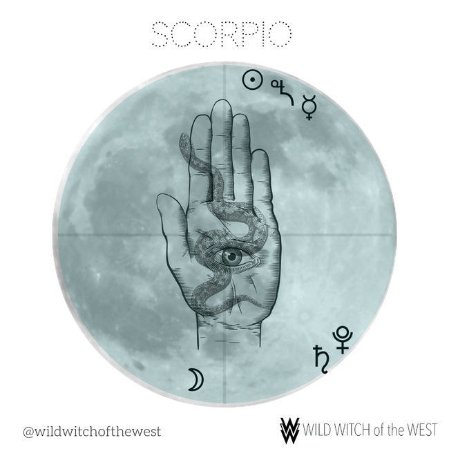 Shedding & Shadow :: Scorpio Full Moon