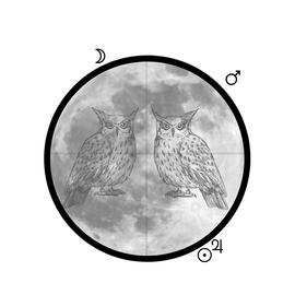 Opposites & Overthinking :: Gemini Full Moon