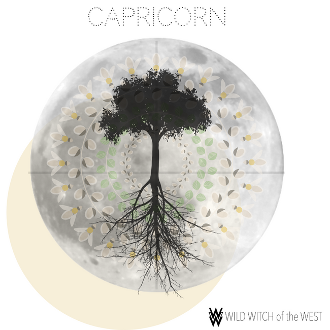 Solitude & Slowdown :: Capricorn Partial Lunar Eclipse
