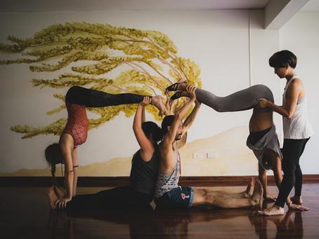 ¡Vamos al Yoga, familia!